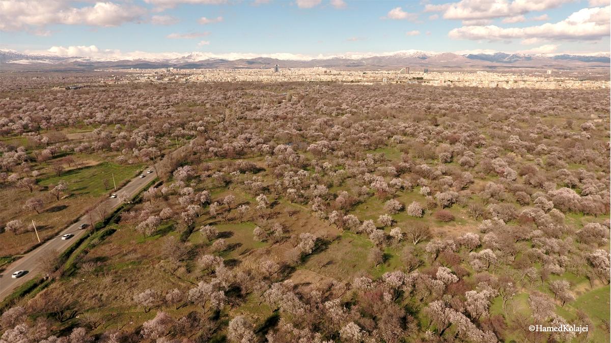 میراث در خطر، باغستان سنتی قزوین – انسانشناسی و فرهنگ